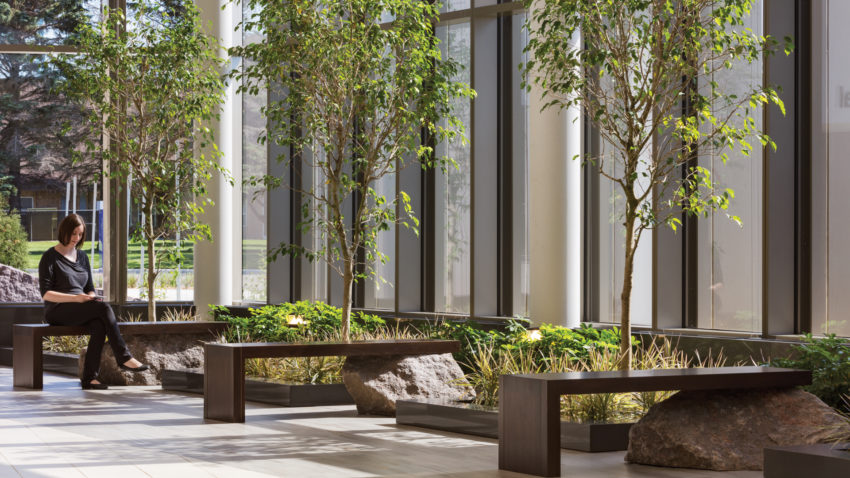 Brookings Hospital Addition and Renovation Exterior Green Space Sitting Area