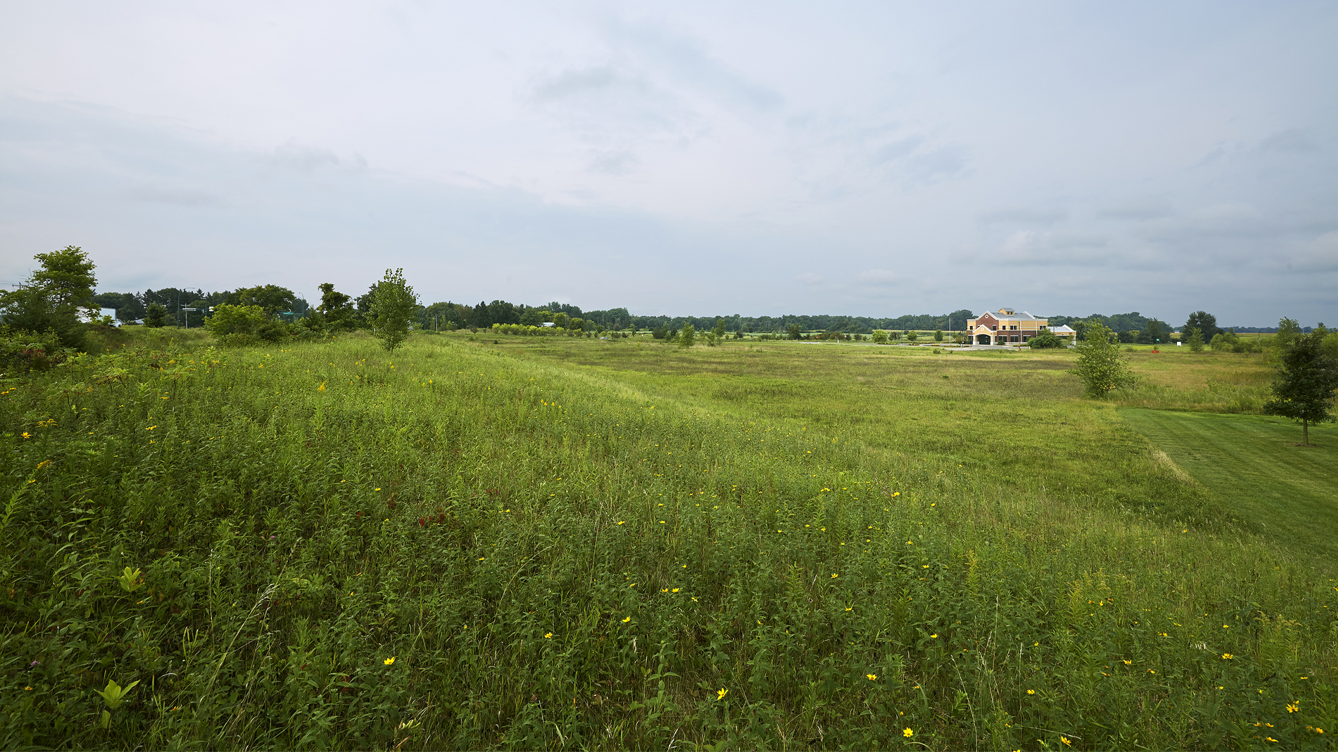 The Village at Headwaters build-to-suit Land Forest Lake MN View 4