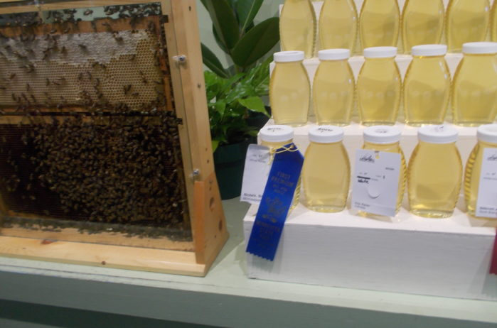 KA's urban bees produced blue ribbon-winning state fair honey at the MN State Fair